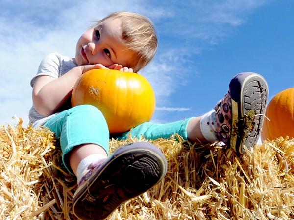 2014 Harvest Festival
