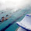 Frigid Swim at CAC