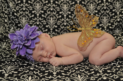 newborn Joni's baby pics of Sarah Beth 428-L