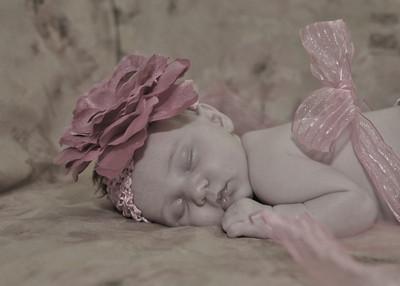 newborn Joni's baby pics of Sarah Beth 371-L