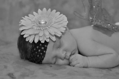newborn Joni's baby pics of Sarah Beth 368-L