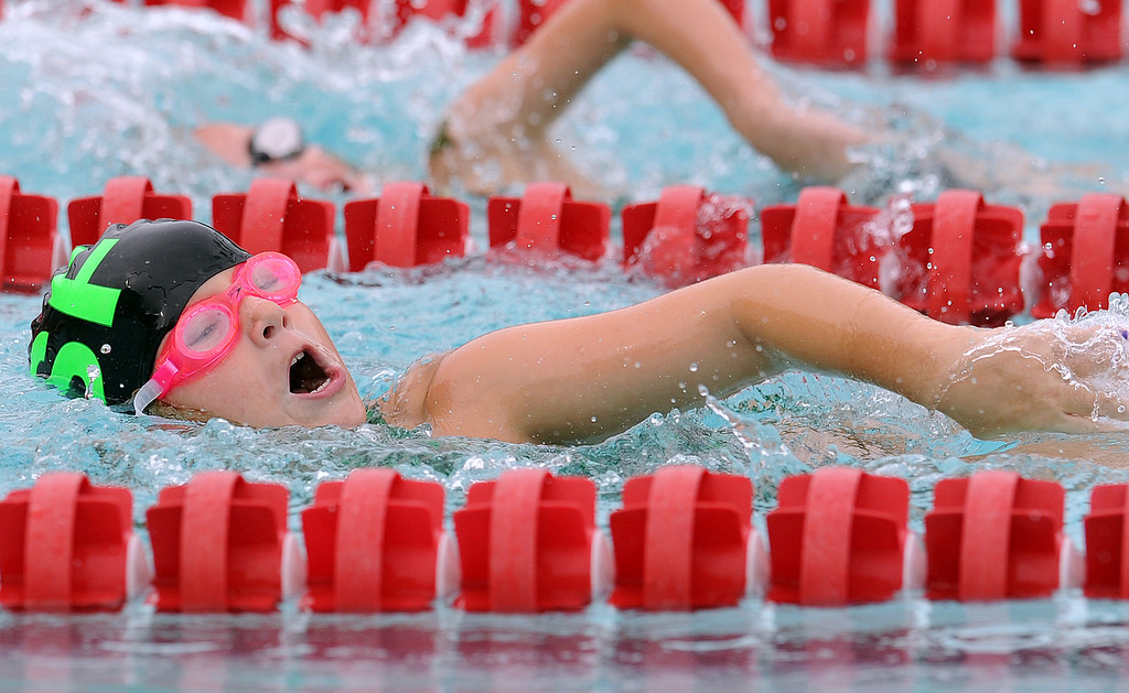 The SAIL Swim Season opens this week.Please use the e-mail address, the cell number or FaceBook to let us know when we can photograph your home swim meet.<br /> GWINN DAVIS PHOTOS <br /> gwinndavis@gmail.com (e-mail)<br /> (864) 915-0411 (cell)<br /> gwinndavisphotos.com (website)