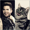 cat and adam erzsebet_molnar