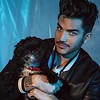 "stewiesinclair<br /> April 7<br /> Having a moment with @adamlambert on set for @attitudemag #stewiesinclair #adamlambert #puppy #dog #yorkie #yorkiepoo #glambert #shoot #josephsinclair<br /> <br /> <a href=""https://instagram.com/p/1L5G05wVBR/"">https://instagram.com/p/1L5G05wVBR/</a>"
