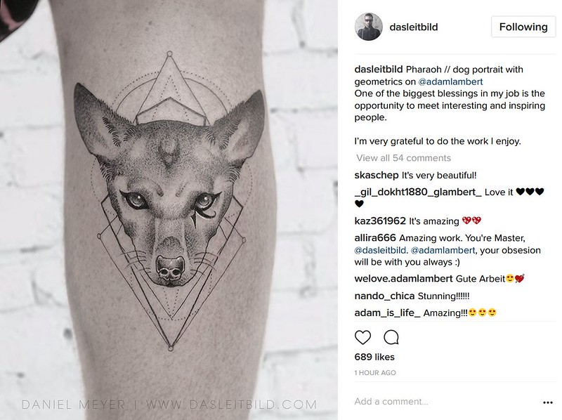 ᕙღ( ͡ᵔᴥᵔ )ღᕗ   dasleitbild  Pharaoh // dog portrait with geometrics on @adamlambert One of the biggest blessings in my job is the opportunity to meet interesting and inspiring people.  I'm very grateful to do the work I enjoy.