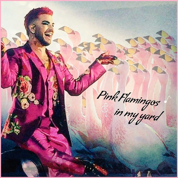 Glambertqueen-iris 🍸‏ @hannymouse76  @adamlambert 🌸🏵🌸 Cool Song... We want the whole album now! Adam you are the king of surprises! 😊 I❤it #TWOFUX