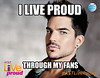 adam lambert - live proud - blog post meme 6 4