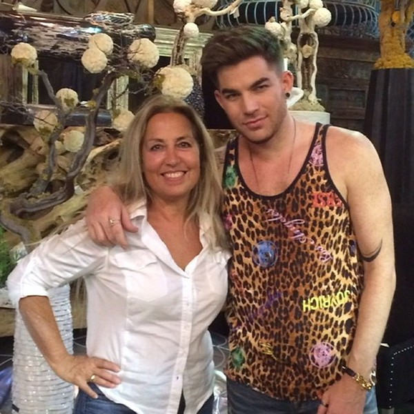 ✨💙✨ Adam Lambert decorating new home at Designers Views Oct 3, 2014