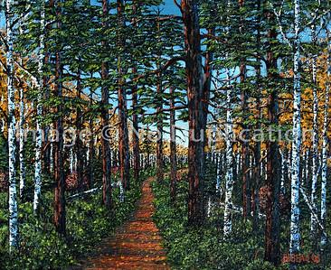 2014 WB pines pathfall