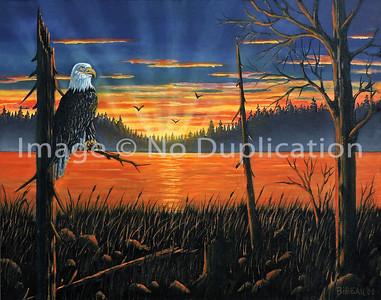 2008 WBeagle sunset
