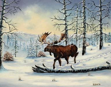 "2006 WB ""Moose"""