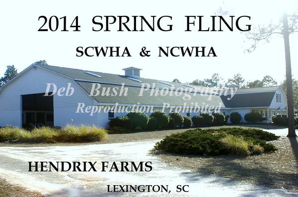 2014 SPRING  FLING - LEXINGTON SC  MARCH 8  HENDRIX FARMS