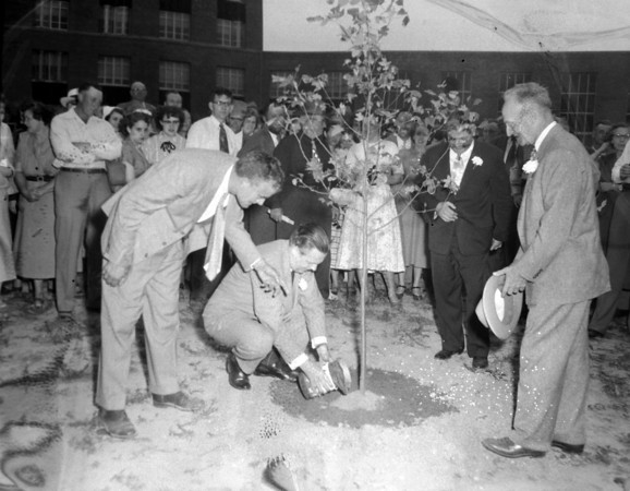 Gov. William Stratton pours soil from 48 states around a tulip tree on hospital grounds while farm adviser Clinton S. Cutright gives direction during the 1954 dedication ceremony.