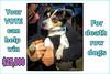 p1140271KathyLeistner_102114_Snapseed_help3