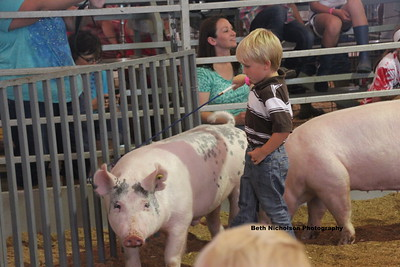 2013 Swine Pee Wee Showmanship