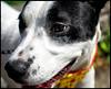 dsc_1427KathyLeistner_091914ED_Snapseed