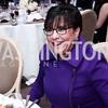 Sec. Penny Pritzker. Photo by Tony Powell. 2015 Diplomat of the Year. Park Hyatt. October 20, 2015