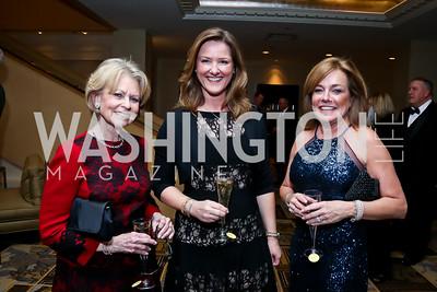 Diana Goldberg, Pam King Sams, Deidre Adkins. Photo by Tony Powell. 2015 Heroes Curing Childhood Cancer Gala. Four Seasons. February 21, 2015