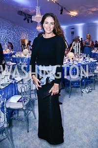 Amanda Whiting. Photo by Tony Powell. 2015 NSO Season Opening Ball. September 20, 2015