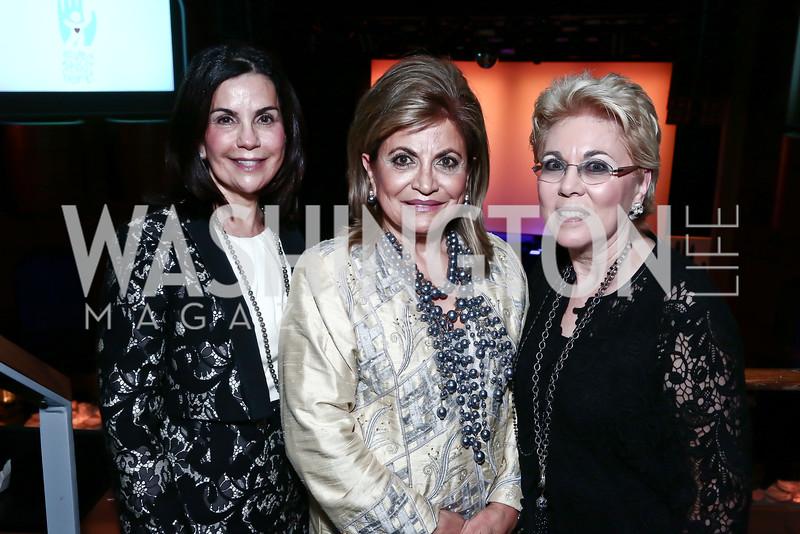 Barbara Goldberg Goldman, Annie Totah, Pennie Abramson. Photo by Tony Powell. Save a Child's Heart. Howard Theater. November 1, 2015