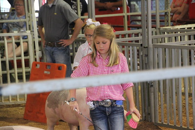 2015 Swine Show