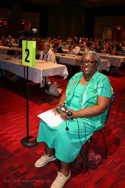 Ninth Triennial Convention | Carolyn Davis