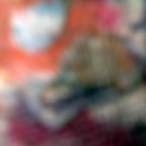 """""""Detail 0982"""""""