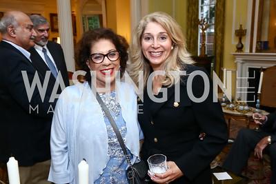 Shahin Mafi, Janet Pitt. Photo by Tony Powell. American Barbecue. Coopersmith Residence. June 4, 2015