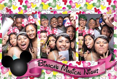 Bianca's Magical Night