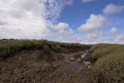Blakeney Nature Reserve, Norfolk