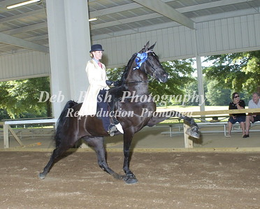 CLASS 14  SCWHA MEMBERS ONLY AMATEUR SPECIALTY