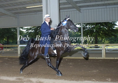 CLASS 23 50 AND OVER AMATEUR SPECIALTY