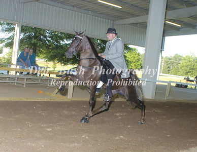 CLASS 24  TWO YR OLD OPEN
