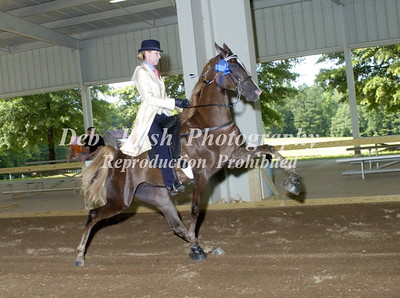 CLASS 6  TWO YR OLD AMATEUR