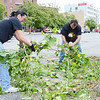 Approximately 350 volunteers from Crossroads Community Church spread out across Main Street on Saturday afternoon to revitalize the downtown area. Charlotte Rodriguez and Michael Lemay work to clean brush from the viewing area in front of Riverfront Park. SENTINEL & ENTERPRISE/ Ashley Green