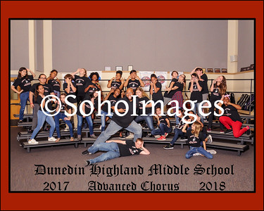 DHMS Chorus 2017