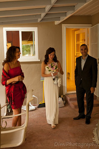 Nunta Dana si Cipri-9