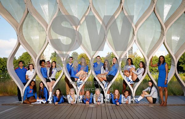 2015 DePaul Volleyball Team