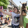 Alexis and Ashton Luhtjarv snap a photo with a llama during the 4th of July parade on Monday morning. SENTINEL & ENTERPRISE / Ashley Green