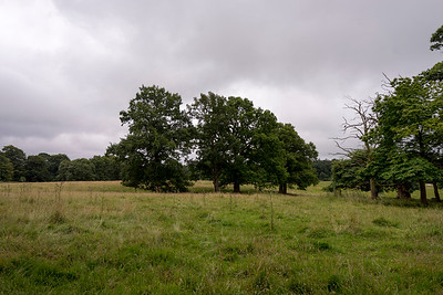 Hare Hill and Alderly Edge