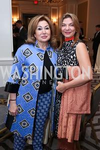 Maha Kaddoura, Dr. Doaa Taha. Photo by Tony Powell. Harvard Business School Inaugural Gala. Ritz Carlton. June 11, 2015