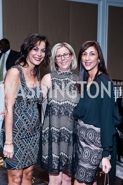 Elaine Koch, Susan Lowenthal, Maria Ferris. Photo by Tony Powell. BGCGW ICON 15. Ritz Carlton Tysons. November 9, 2015