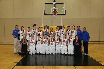Girls SubSection basketball playoffs