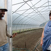Owner and Executive Director Maria Moreira and Sangiwa Eliamani look over some crops at World Farmers in Lancaster. SENTINEL & ENTERPRISE / Ashley Green