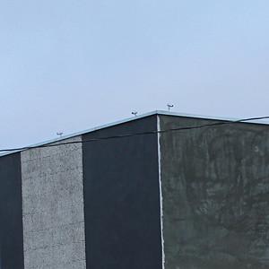 "Birds (""Landscape 1460-A"")"