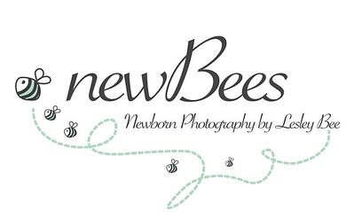 Lesley Bee Photography New Logo