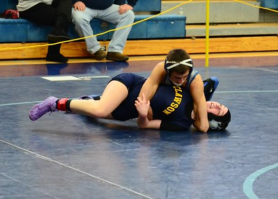 2015 MHSAA division III wrestling individual districts