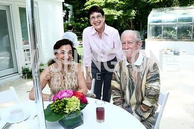 Inna Metler, Eileen Tanner, Bill Metler. Photo by Tony Powell. Music at the Phillips 75th Season Preview. Stoker Residence. June 6, 2015