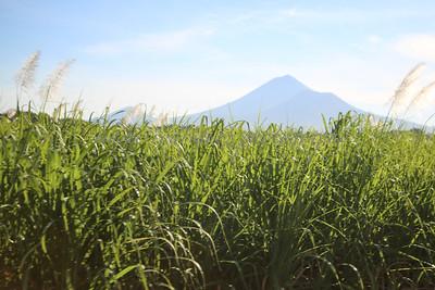 Nicaragua 120914 17 300-5