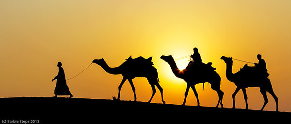 Sunset on Thar desert